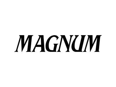 Magnum Watch